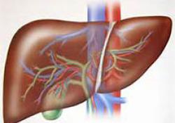 """Hanmi的<font color=""""red"""">NASH</font>候选药物HM15211治疗硬化性胆管炎,获得FDA孤儿药称号"""