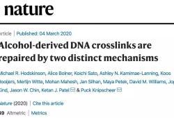 Nature:重磅!饮酒引起的DNA损伤竟可以修复?新方法安全又高效!
